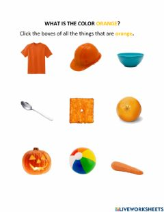 Interactive worksheet What is the Color Orange?