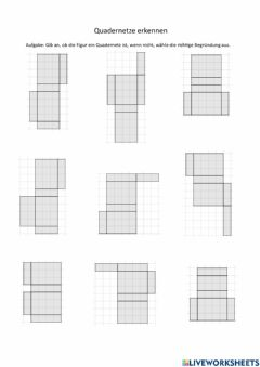 Interactive worksheet Quadernetze erkennen