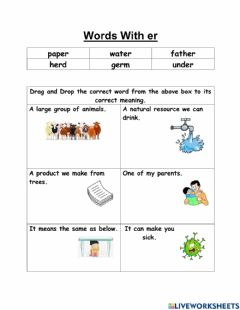 Interactive worksheet Words with er