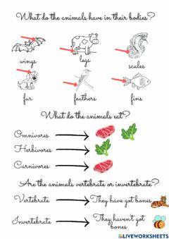 Interactive worksheet Animal's review
