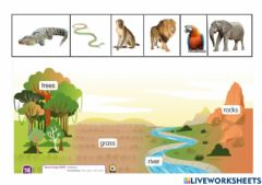 Interactive worksheet Where do they live?