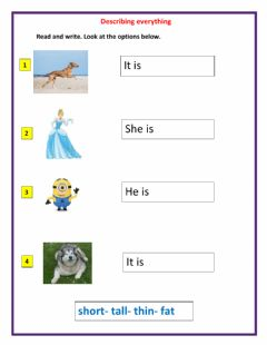 Interactive worksheet Read and write.