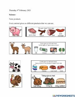 Interactive worksheet Farm animal products