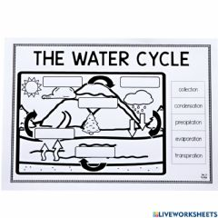 Ficha interactiva The water-cycle