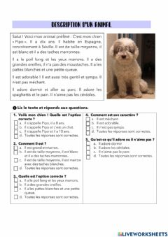 Interactive worksheet Compréhensión écrite animal