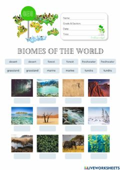 Interactive worksheet Montessori Geography: Biome Identification (HuntersWoodsPH)