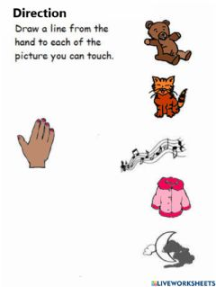 Interactive worksheet Sense of touch