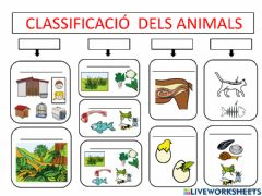 Ficha interactiva Classificació animals vertebrats