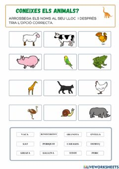 Interactive worksheet Animals domèstics i salvatges