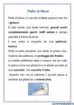 Interactive worksheet Palla di Neve