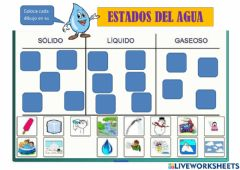 Interactive worksheet Estados del agua-1º primaria