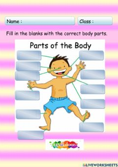 Interactive worksheet My Body Parts
