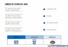 Interactive worksheet Cambios estado agua