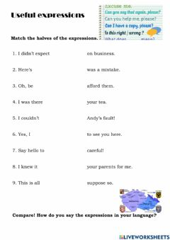 Interactive worksheet Useful expressions