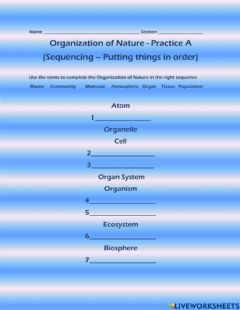Interactive worksheet Organization of Nature Levels List A