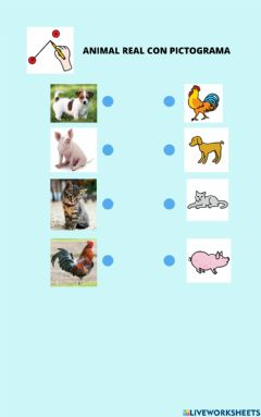 Interactive worksheet Animal real - pictograma (Animales domésticos 2)