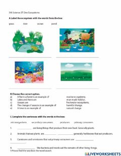 Interactive worksheet Matter and Ecosistems