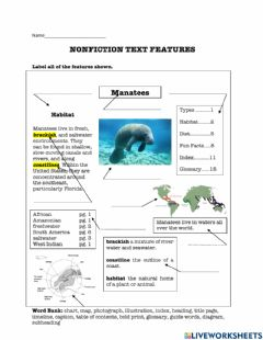 Interactive worksheet Text Features 3