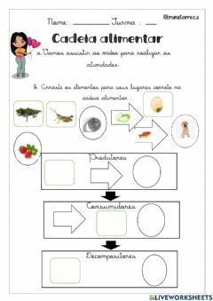 Interactive worksheet Cadeia Alimentar