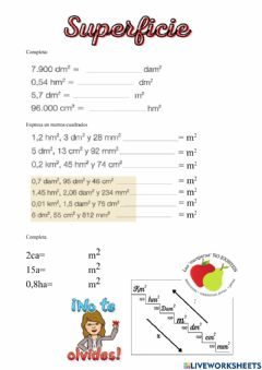 Interactive worksheet Superficie