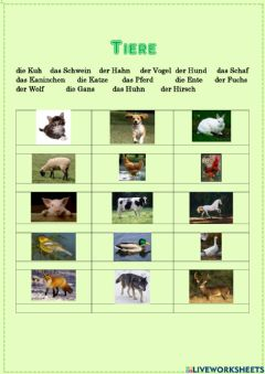 Interactive worksheet Tiere - kennst du alle?