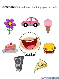 Interactive worksheet Sense of Taste