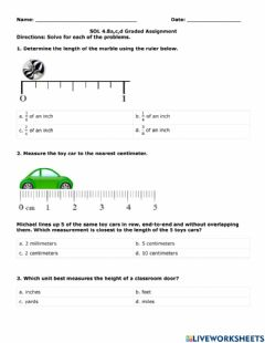 Interactive worksheet Length Classwork