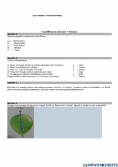 Interactive worksheet Teste 8 ano