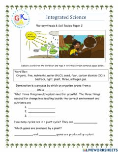 Interactive worksheet Photosynthesis & Soil Review Paper 2
