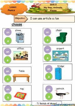Interactive worksheet An or a article