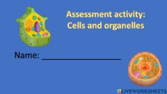 Interactive worksheet Plant and animal cells