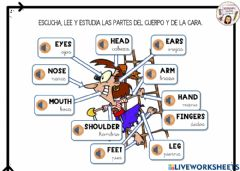 Interactive worksheet Parts of the body REVISION