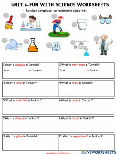 Interactive worksheet 4.6 Fun with Science Worksheets