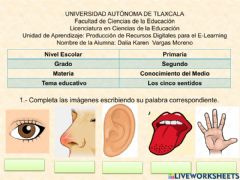 Interactive worksheet Los 5 sentidos