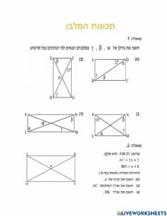 Interactive worksheet תכונות מלבן