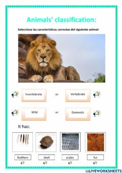 Interactive worksheet Animal's classification
