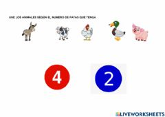 Interactive worksheet Numero de patas