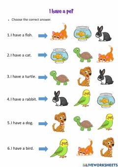 Interactive worksheet I have a pet