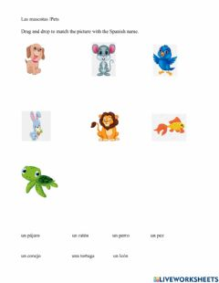 Ficha interactiva Pets in Spanish