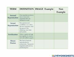 Interactive worksheet Asexual and Sexual Reproduction Vocabulary