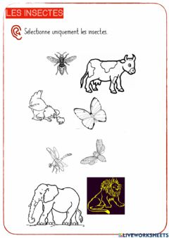 Interactive worksheet Les insectes-3