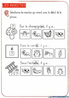 Interactive worksheet Les insectes-4