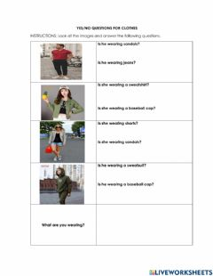 Interactive worksheet Clothes yes no questions