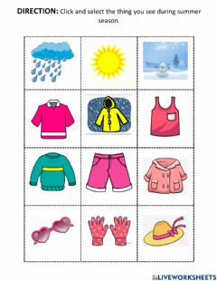 Interactive worksheet Summer