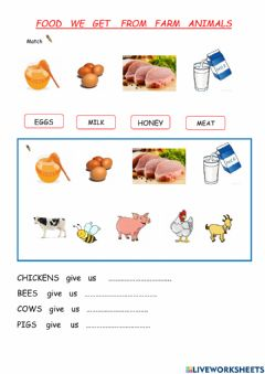 Interactive worksheet Food we get from farm animals
