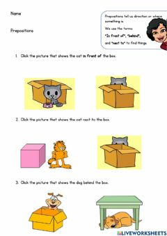 Interactive worksheet Prepositions (in front of, next to, behind)