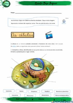 Interactive worksheet As células