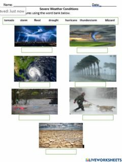 Interactive worksheet Severe Weather Conditions