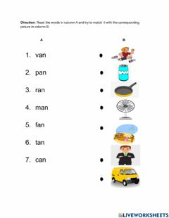 Interactive worksheet -an Word Family