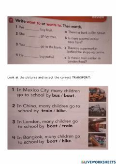 Interactive worksheet Conjugating 1st person and 3rd person 'To Want'